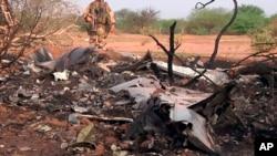 法国陆军提供的照片显示阿航客机坠毁现场