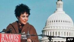 Filmska zvezda Elizabet Tejlor, koja se pred kraj karijere posvetila humanitarnom radu, 1996. je ispred zgrade Kapitola u Vašingtonu pročitala neka od hiljada imena ljudi koji su umrli od side kako bi podigla svest o tom problemu i podstakla dalja istraži