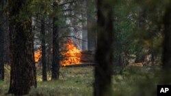 Vatra gori nedaleko od drveća koje je oštetio požar Butleg, 22. jula 2021. u Pejsliju, Oregon.