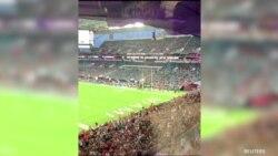 Stadyumdaki Seyirciler Kedinin Hayatını Kurtardı