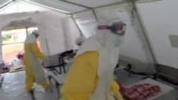 West Africa Ebola VO