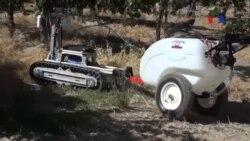 Robot đa năng giúp nông dân tiết kiệm chi phí