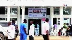 Ebola virusuna qarşı mübarizə davam edir