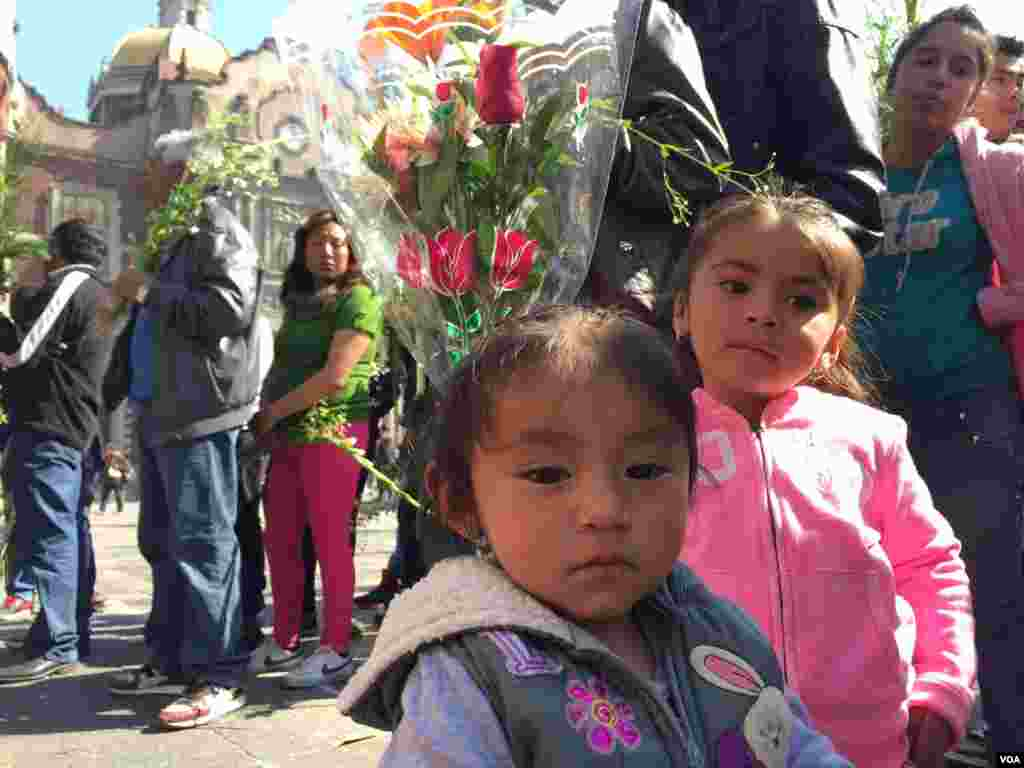 Pilgrims of all ages make their way to the Basilica of Our Lady of Guadalupe to see Pope Francis, Mexico City. (C. Mendoza/VOA)