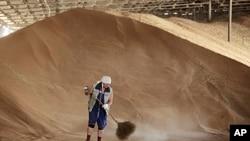 俄罗斯一名粮仓雇员6月7日在整理储存的谷物