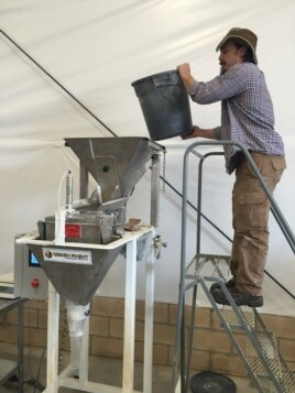 The Teff Company founders' son Gareth Carlson joined the family business. Here, he loads teff flour into a packaging machine. (Credit: Tom Banse)