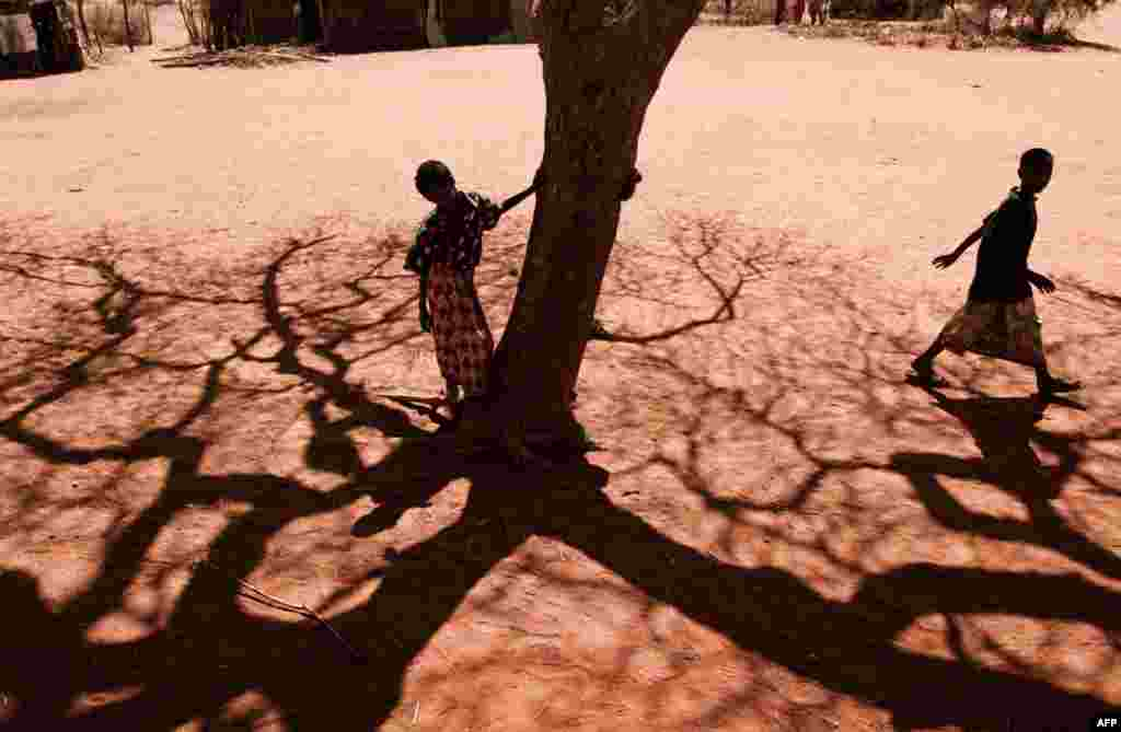 July 22: A boy stands next to a tree in the village of Barmil, where people wait for water because their wells are dry. Much of east Africa is going through a severe drought. REUTERS/Jakob Dall/Danish Red Cross/Handout