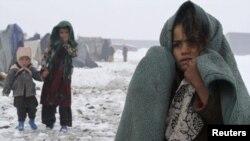 ملګري ملتونه وايي، اکثره بې ځایه شوي افغانان د جګړو او وچکالۍ له امله خپلو مینو پریښودلو ته اړ شوي دي.