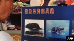 Japonya Çinli Kaptanı Serbest Bırakıyor