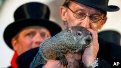 宾夕法尼亚州的土拨鼠彭格苏塔维尼•菲尔预测美国人还要忍受六个星期的严冬。