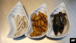 From left to right, bamboo worms, silkworms and giant water beetles are some of the ingredients used at Insects in the Backyard restaurant, in Bangkok, Thailand, Sept. 12, 2017.