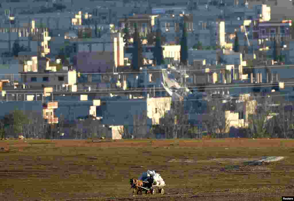 A Kurdish farmer is seen riding his horse-drawn cart close to the Syrian town of Kobani during fighting between Islamic state militants and Kurdish fighters, near the Turkey-Syria border, Nov. 6, 2014.