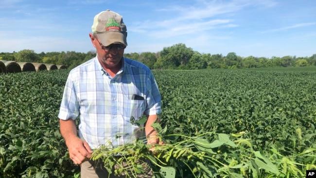 美国农民对第一阶段贸易协议的执行表示怀疑