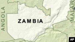 아프리카 잠비아.