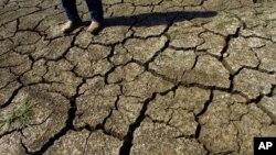 미국 서부에서 가뭄으로 갈라진 땅.