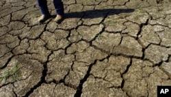La peor sequía se registra en los estados centrales de Iowa, Nebraska, Kansas, Missouri e Illinois.
