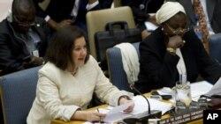 Embaixadora do Brasil na ONU, Maria Luiza Viotti