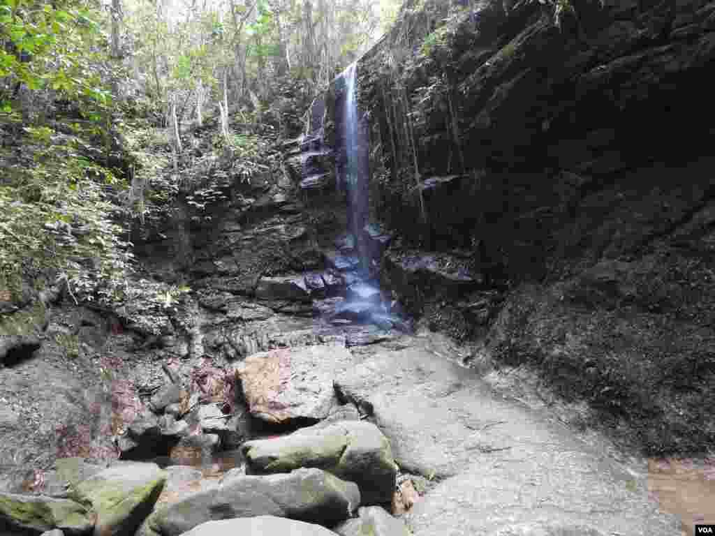 یک آبشار کوچک در جنگل بارانی تیجوکا در ریو