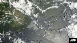 漏油漂浮在密西西比三角洲的沿海