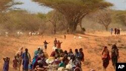 نعش کی واپسی کے لیے صومالی اغواکاروں کا رقم کا مطالبہ