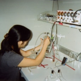 A research associate at Davis' lab prepares the series of tubes for the flies' olfactory memory training.