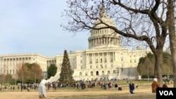 圣诞节这天,游人走过国会山圣诞树。(2019年12月25日)