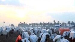 Amnesty İnternational: Qaçqınların sayı milyonlara çatıb