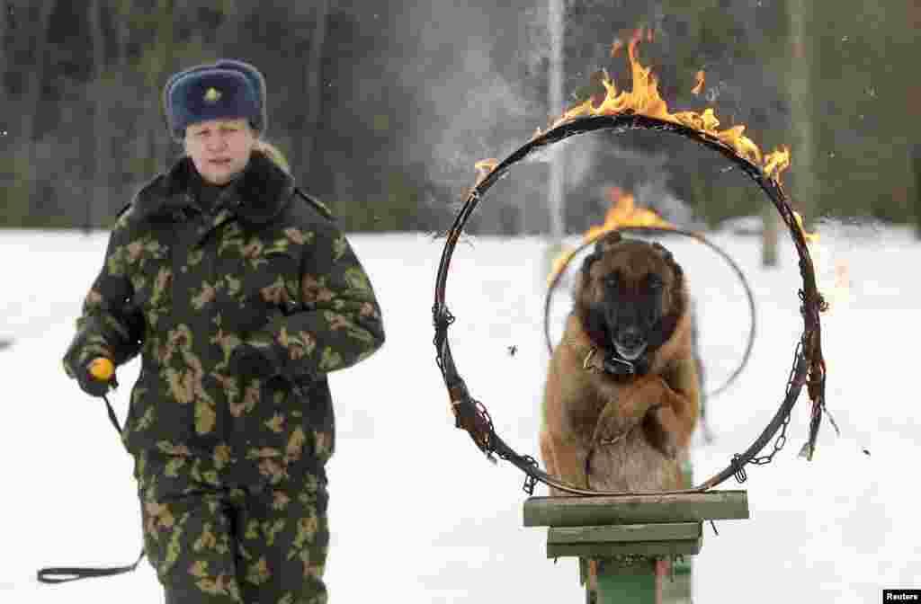 Belarus militsiyasi