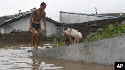 30일 북한 평안남도 안주에서 홍수 피해를 입은 마을.
