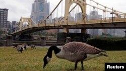 Vue de la rivière Allegheny près du centre de Pittsburgh