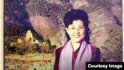 前中共中央黨校教授蔡霞(資料照片)