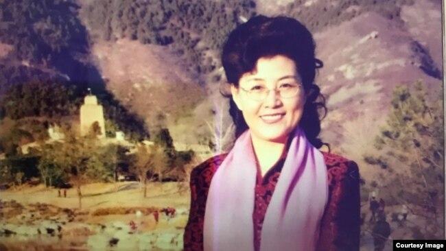 资料照:前中共中央党校教授蔡霞