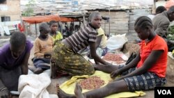 Karimojong children clean beans to make money to feed their families, Kampala, Uganda, Aug. 23, 2012 (Hilary Heuler/VOA).