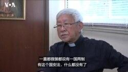 专访陈日君:国安法实施后香港人失去自由
