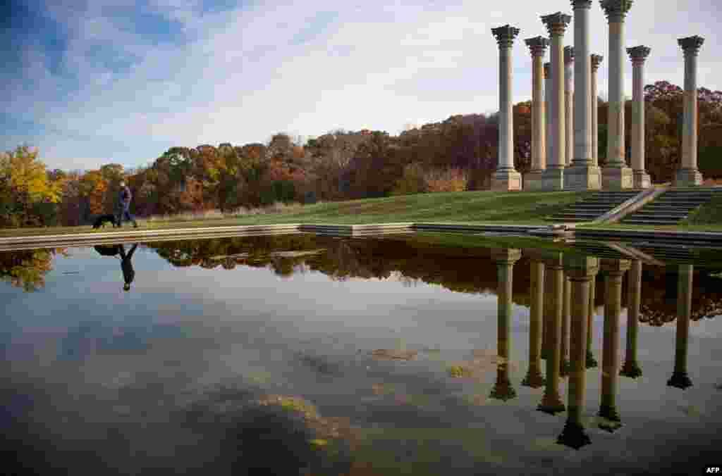 Seorang pria membawa anjingnya berjalan-jalan melewatiNational Capitol Columns diUS National Arboretum diWashington, DC. Tempat ini awalnya dibangun sebagai bagian dariserambi timur gedung Capitol pada tahun1828, sebelum kubahCapitol selesai dibangun. Ke-duapuluhdua kolom tersebut diletakkan di padang rumput, yang dikenal dengan Padang RumputEllipse.