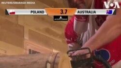Australia vô địch thi 'đốn cây'