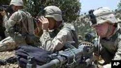 아프간 군과 함께 작전중인 미군 (자료사진)