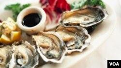 A pesar de este proyecto de reciclado, tomará varias décadas completar en su totalidad la restauración de la población de ostras en la bahía.