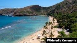 Hanauma Bay in Hawaii has been named the best beach in the United States.
