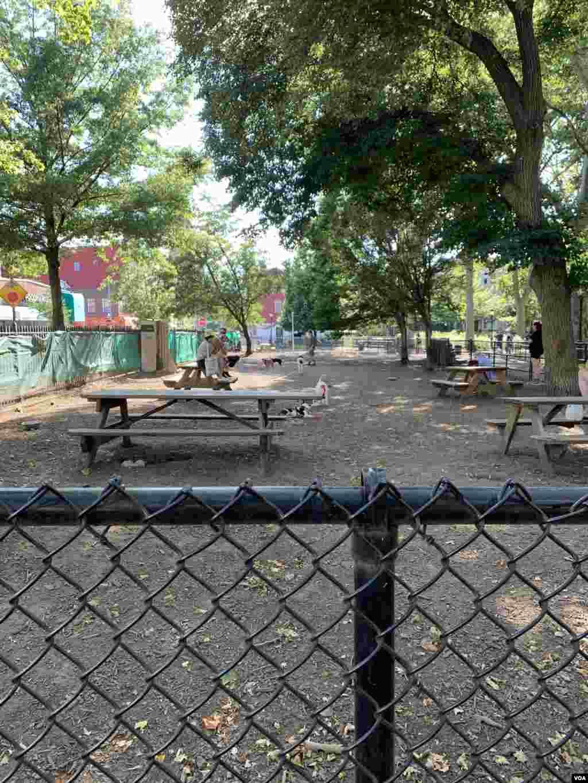 Amerikada itlərin də öz parkı var