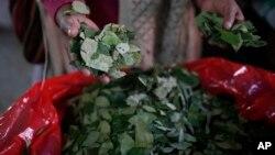 El presidente boliviano Evo Morales aseguró que es necesaria una nueva ley que contemple la producción de hoja de coca.