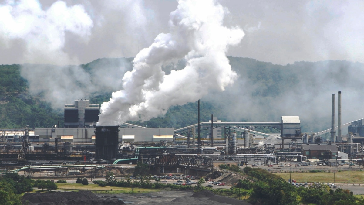 Study: Planting Trees near Factories Can Help Reduce Pollution