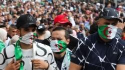 Hirak: des milliers de manifestants ont défilé à Alger