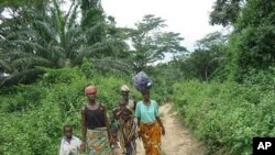 A group of Ivorian refugees walk to the town of Gborplay in Liberia (File Photo)