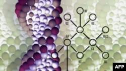 Mënyrë e re për ndryshimin e kodit gjenetik në qelizat e gjalla