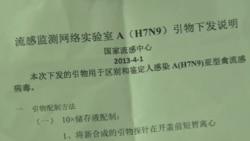 中國發現更多禽流感病例