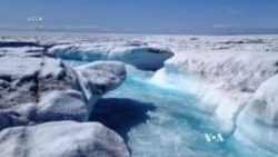 Scientists Uncover 'Contributor' to Greenland Sea Level Rise