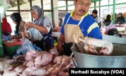 Meski harga jual peternak anjlok, harga ayam di pasar masih wajar. (Foto: Nurhadi Sucahyo/VOA)