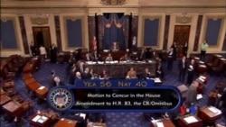 2014-12-14 美國之音視頻新聞: 美國國會參議院批准聯邦政府預算案