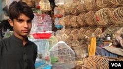 یکتن از فروشندگان پرنده ها در بازار جلال آباد